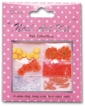 Nail Art Kit - Collection 01