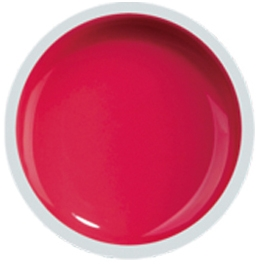 Fengshangmei Cover Color Gel - GS048 - Pink Red