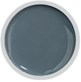 Fengshangmei Cover Color Gel - GS018 - Gray