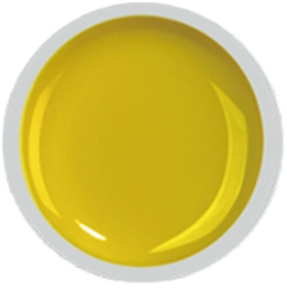 Fengshangmei Cover Color Gel - GS021 - Dust Yellow
