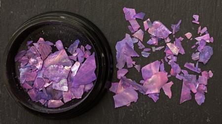 Natural Shell Fragments