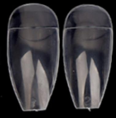 Ballet / Coffin Clear
