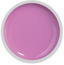Fengshangmei Cover Color Gel - GS066 - Pink Purple