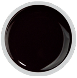 Fengshangmei Cover Color Gel - GS034 - Black Brown